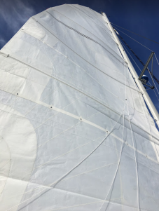 Our new sail